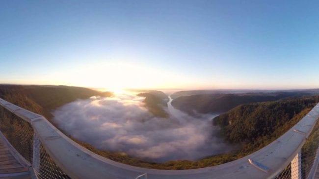360-Grad-Video Baumwipfelpfad