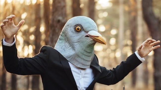 Menschliche Taube im Wald
